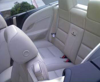 The Backseats